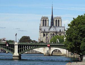 Notre-Dame gezien vanaf de Seine