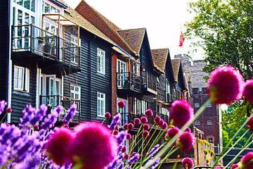 Glänzender Sommer - Canterbury, England von Loretta's Art