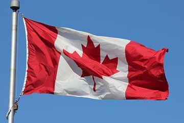 canadese vlag van Bas Berk