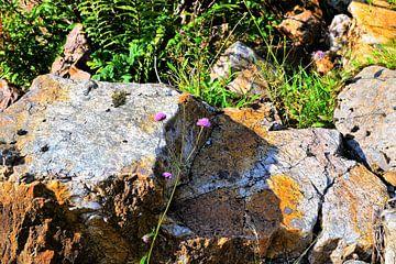Schotland, rotsen in de Hooglanden van Marian Klerx