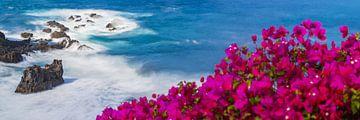Atlantikküste, Teneriffa von Walter G. Allgöwer