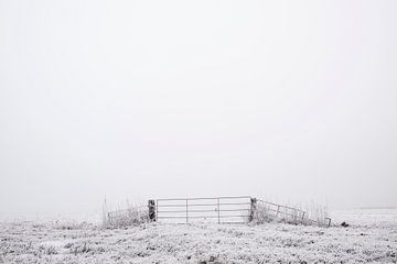 Hek in een bevroren winterlandschap in een weiland bij Kampen van Sjoerd van der Wal