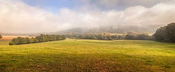 Mistig uitzicht op het Groote Bos bij Heijenrath in Zuid-Limburg  van John Kreukniet