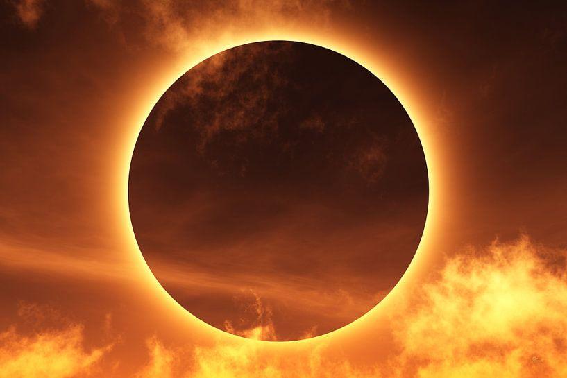 éclipse totale sur Max Steinwald