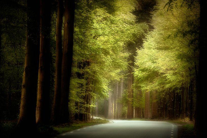 Bright Side Of The Road van Kees van Dongen
