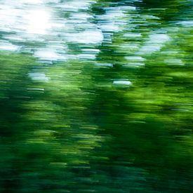 Het schilderachtige, Groningse landschap. van Emma Westers
