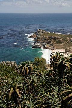 Kaappunt Zuid-Afrika van Jan Roodzand