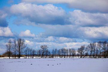 Winterlandschap van Thomas Jäger
