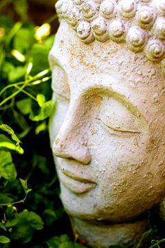 Boeddha von Vincent Vagevuur