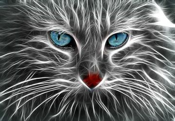 Die Katze von Bert Hooijer