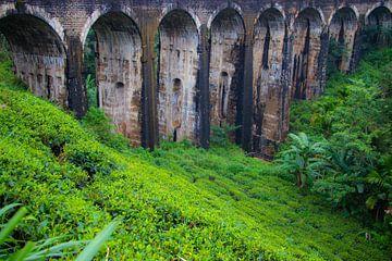 9 arch bridge Sri Lanka van Julie Brunsting
