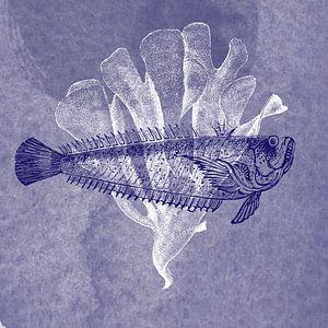 Delftsblauwe vis II van Jadzia Klimkiewicz