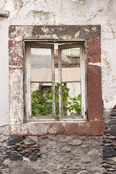 Oud raam van Harm A