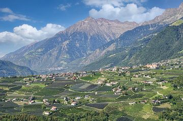 Blick von Schenna nach Dorf Tirol von Peter Eckert