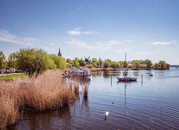 Blick über den Hafen in Werder an der Havel von Animaflora PicsStock