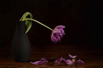 Stilleven Tulp van Rudy & Gisela Schlechter