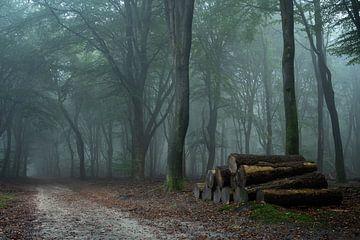 Op een oktober ochtend..... van Peter Korevaar