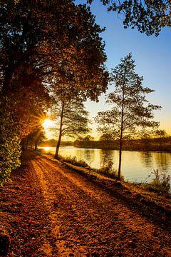 Herfst in Emsland van Günter Albers