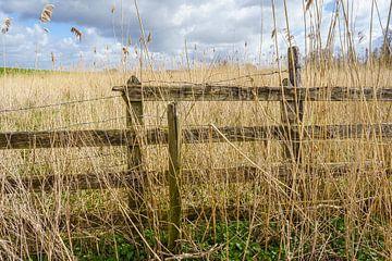 Holzzaun im Biesbosch von Pixel Meeting Point