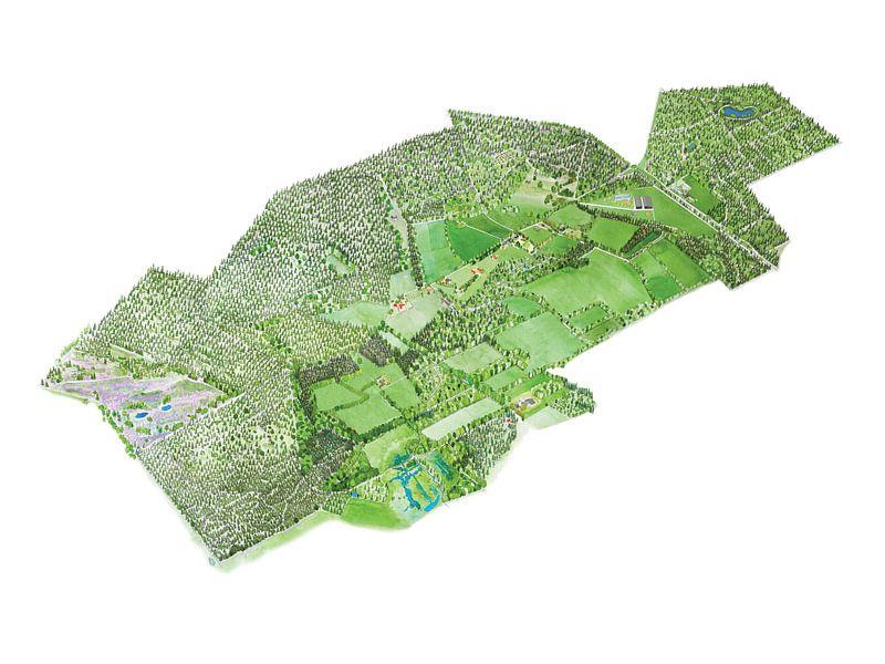 Landkaart van Tongeren - Versie 3 van Wereldkaarten.Shop