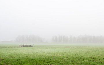 Nebliger Polder mit Zaun in Südholland