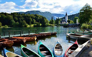 Zonnige ochtend in Slovenië van Tony Van de Velde