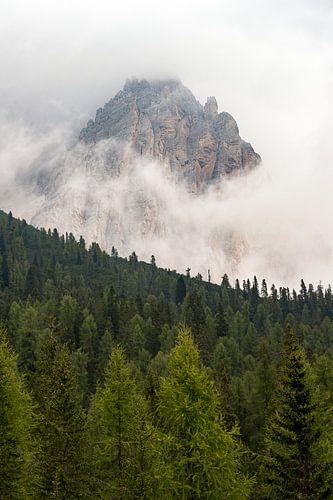 Bergtop van Wim Slootweg