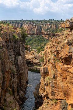 Zuid-Afrika van Dennis Eckert
