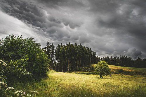 Storm op komst sur