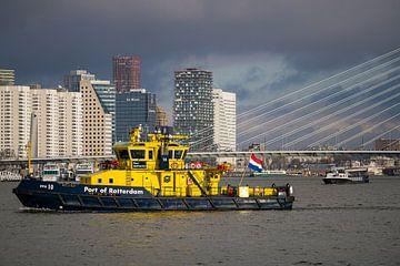 Hafen von Rotterdam - Erasmusbrücke von Sharona de Wolf