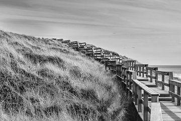 boardwalk van Heinz Grates
