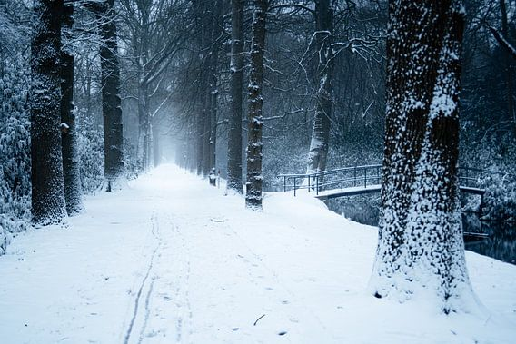 Sneeuwbrug
