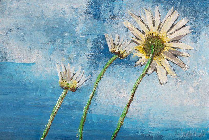 Good Morning Flower von Susanne A. Pasquay