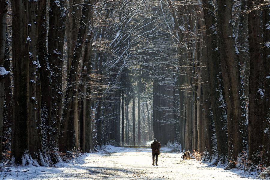 Walk the Dog van Martin Podt