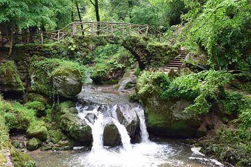 Waterval Schiessentümpel bij Müllerthal in Luxemburg van Nicolette Vermeulen