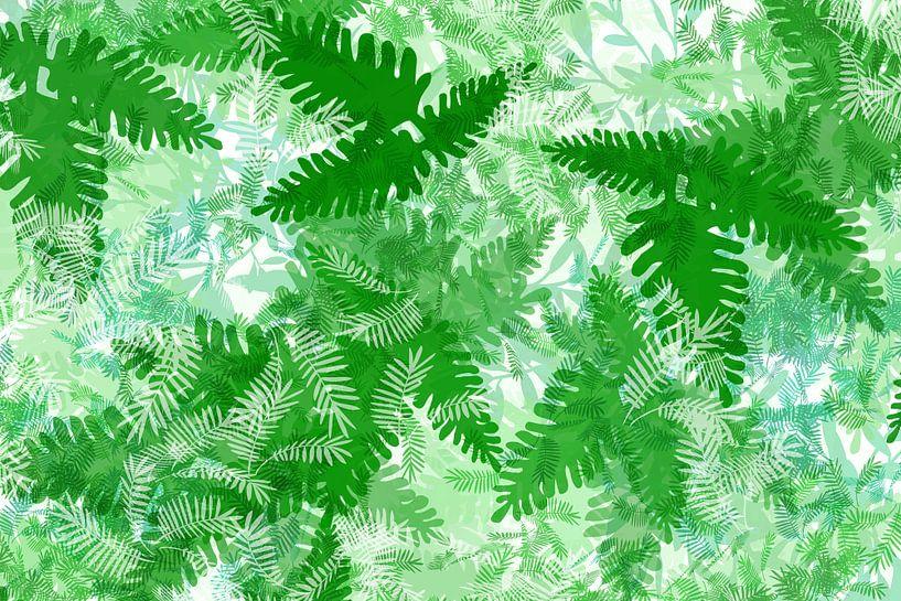 Pflanzen Blätter Farn Grün Illustration Weiß Tropical Dschungel von Andrea Schuller