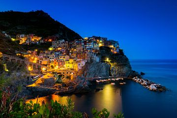 Cinque Terre de 5 bekende dorpjes in Italië van Damien Franscoise
