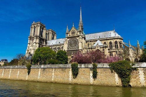 Notre-Dame, Parijs