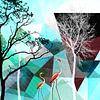 FLAMINGOS P26 van Pia Schneider thumbnail