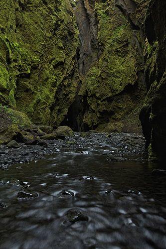 Canyon in Thorsmork, IJsland van