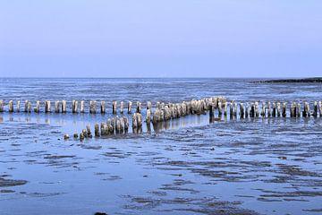 Noordzee van Ines Thun