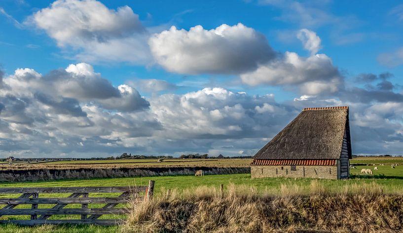 Schapenboet - Texel van Texel360Fotografie Richard Heerschap