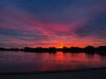 Zonnezuil boven de Rhederlaag in Lathum zonsopkomst van Sharon Hendriks
