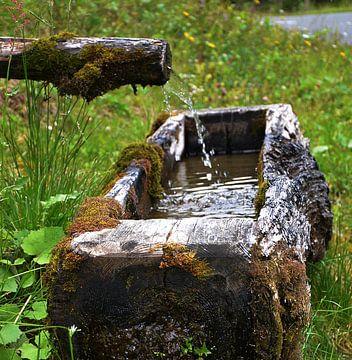 Koud water von Zenna Aydin