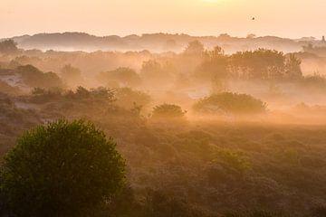 Dünen im Nebel bei Sonnenaufgang von Menno van Duijn