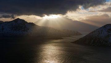 Golden Norway von Timon Schneider