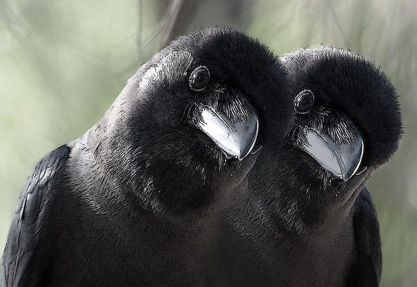 tweeling vogels van Gonnie van Hove