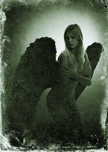 Engel 2 van
