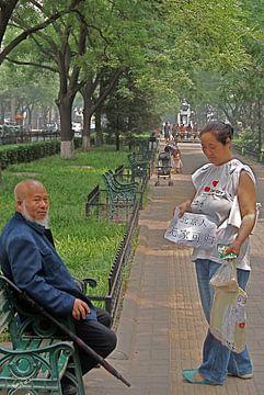 Beijing chat van Wim van de Poll