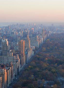 Central Park New York von Robert Styppa